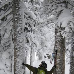 Dream Lake area, Rocky Mountain National Park
