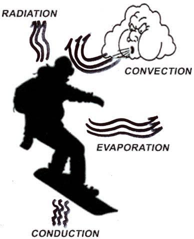 Four mechanisms of heat loss